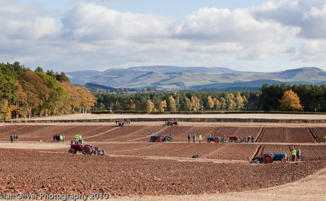Ploughing at Upper Nisbet